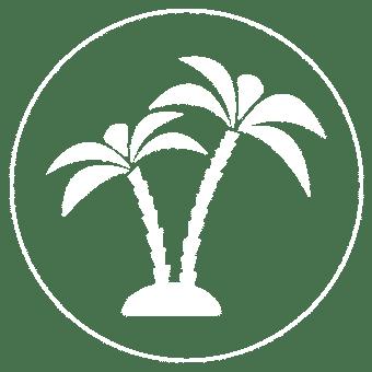 palm-tree-hotel-el-sitio
