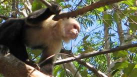 Costa-Rica6
